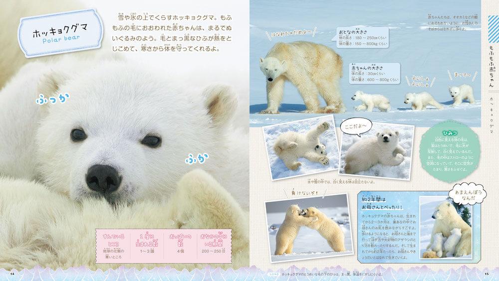 ホッキョクグマの赤ちゃん by 図鑑「もふもふ動物の赤ちゃん」
