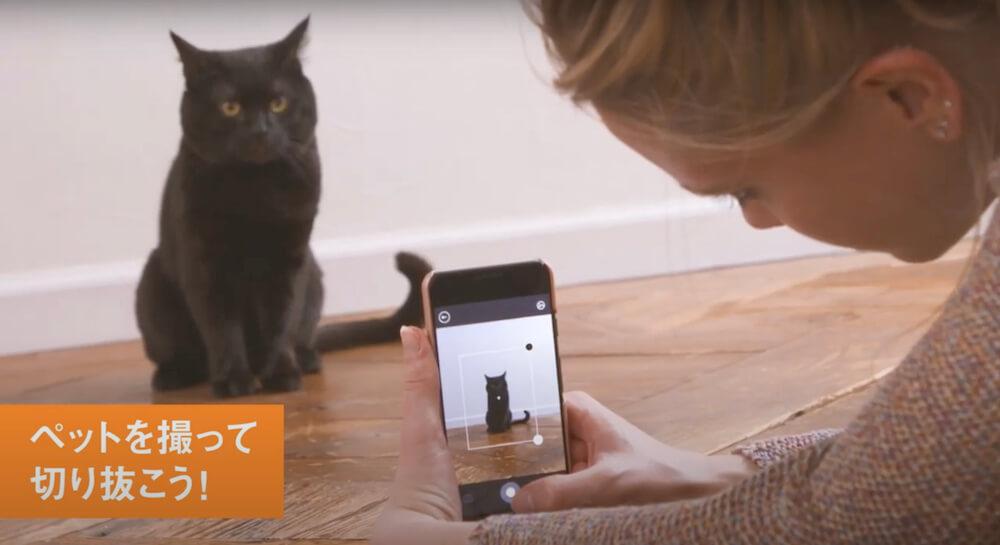 instax mini Linkの専用アプリで猫を撮影