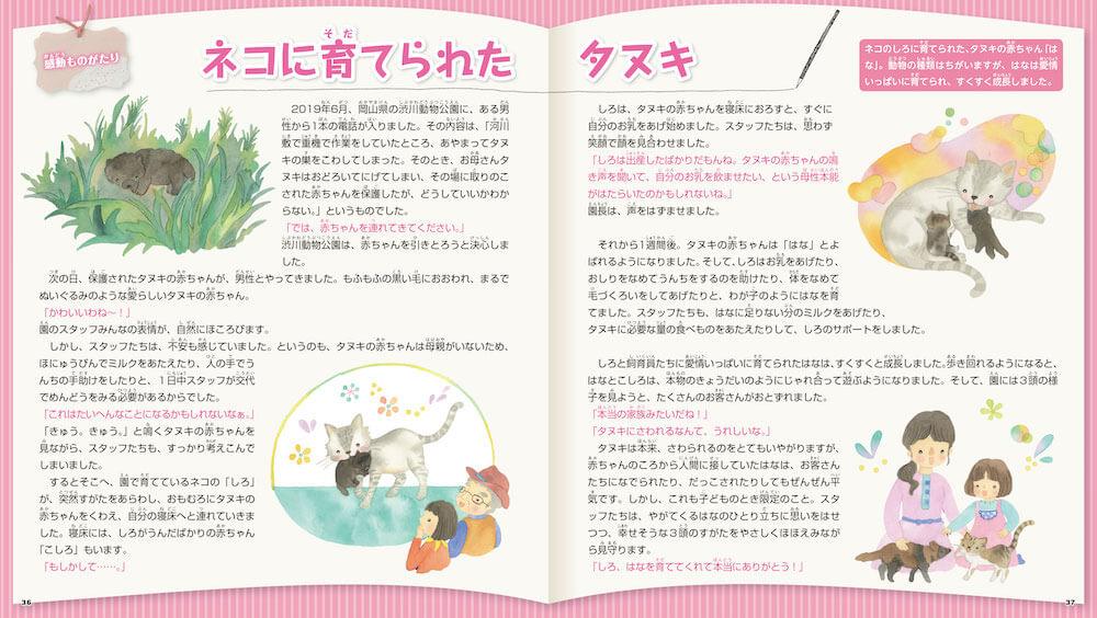 岡山県の渋川動物公園でネコに育てられたタヌキの話