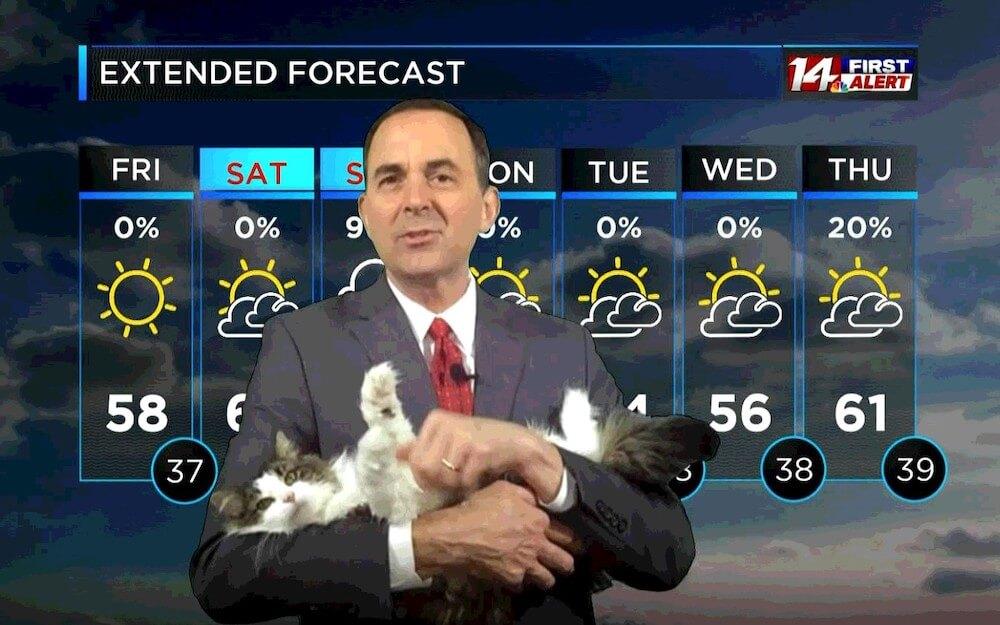 自宅からテレワークで天気予報を解説しながら愛猫のベティを抱っこするジェフ・ライオンズ氏