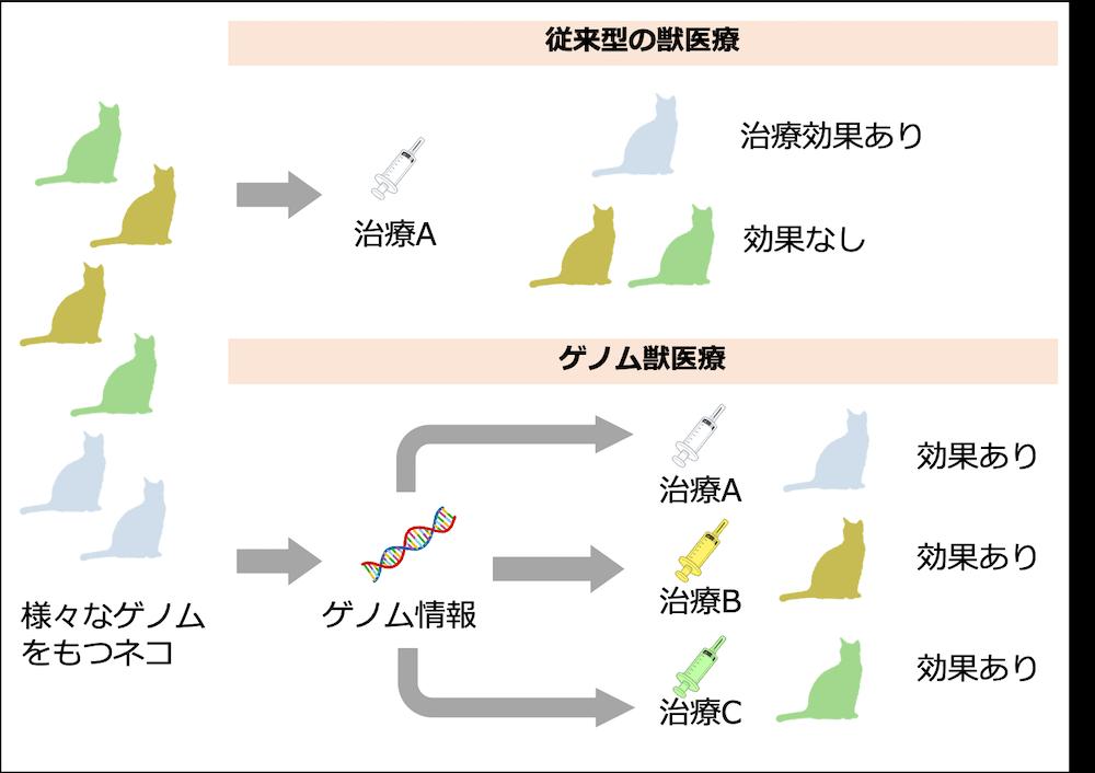 ゲノム獣医療の効果を示した図解イメージ