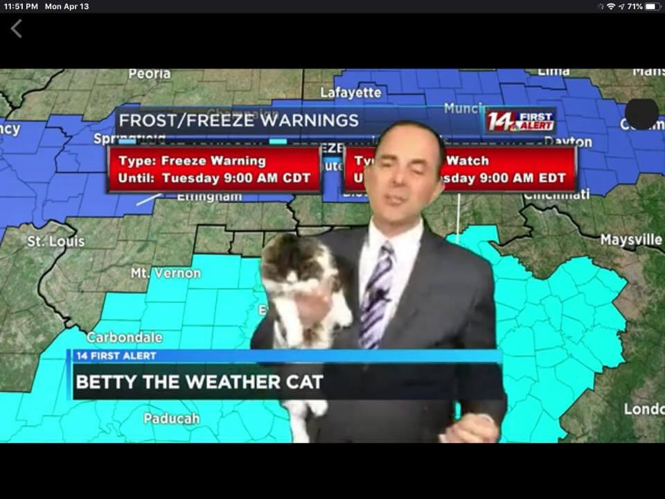テレビ番組で天気予報の解説しながら愛猫のベティ(Betty)を抱っこするジェフ・ライオンズ(Jeff Lyons)