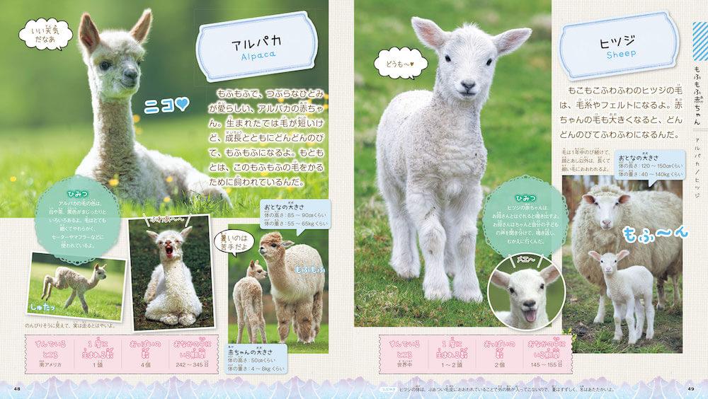 アルパカとヒツジの赤ちゃん by 図鑑「もふもふ動物の赤ちゃん」
