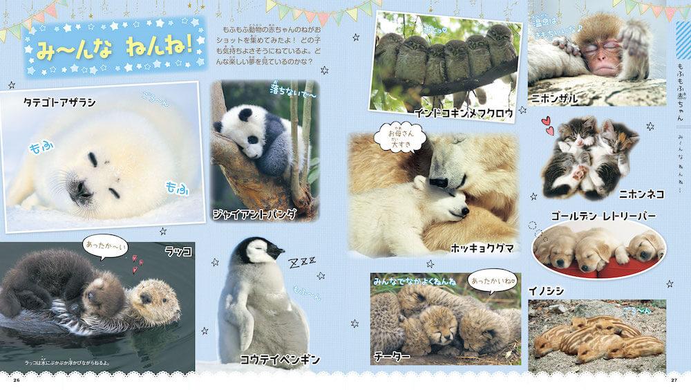 動物の赤ちゃんの寝姿特集 by 図鑑「もふもふ動物の赤ちゃん」