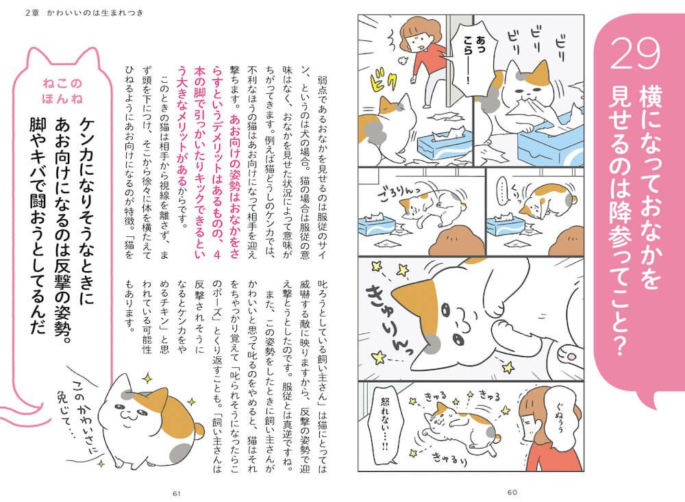 猫がお腹を見せる理由を解説したページ by 「ねこほん 猫のほんねがわかる本」
