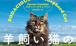 世界ネコ歩きにも登場!アイルランドで最も有名な猫の自伝「羊飼い猫の日記」日本語版が刊行