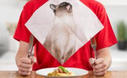 ニャンともかわいい猫の紙ナプキン♪ 遊び心あふれる猫グッズがイギリスの雑貨ブランドから登場