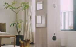 三菱地所が本気をだしてきたニャ…!猫専用のタワーマンション「猫タワマン」が爆誕&実物を公開
