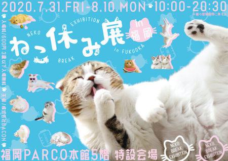 人気猫が集うイベント「ねこ休み展」も再開決定ニャ!7/31から福岡で4年ぶりに開催