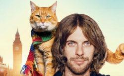 映画「ボブという名の猫」7/5に追悼放送が決定!関連書籍もセール価格で販売中ニャ