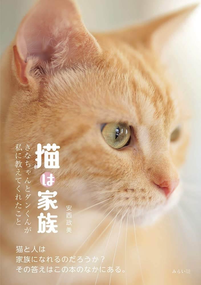 猫写真家・安西政美(あんざい・まさみ)さんの初写真集『猫は家族~きなちゃんとダンくんが私に教えてくれたこと』表紙イメージ