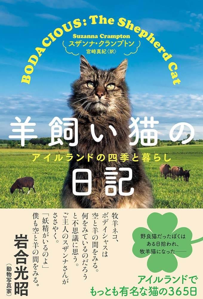 書籍『羊飼い猫の日記 アイルランドの四季の暮らし』の表紙、岩合光昭さんの帯コメント付き
