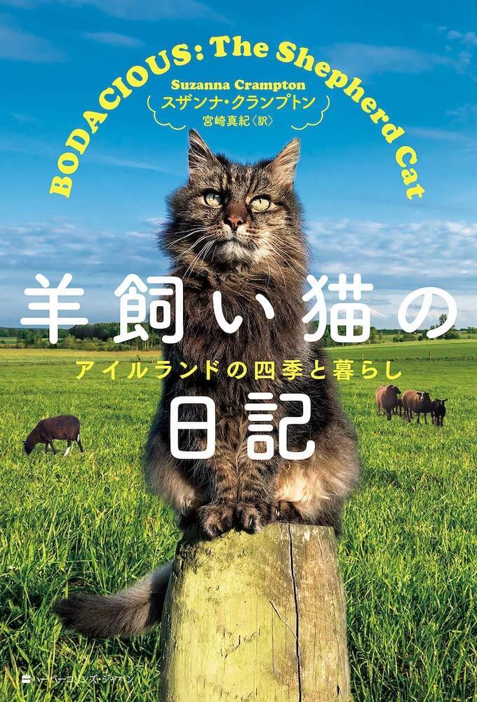 書籍『羊飼い猫の日記 アイルランドの四季の暮らし』の表紙