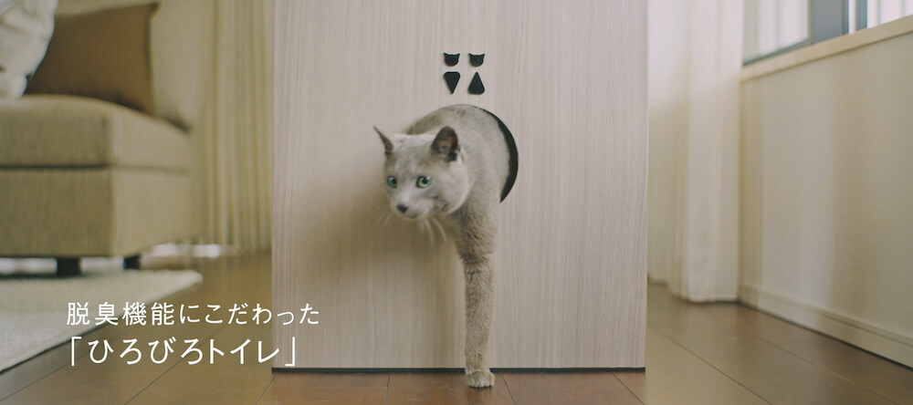猫タワマンの1階でトイレを済まして出来てた猫