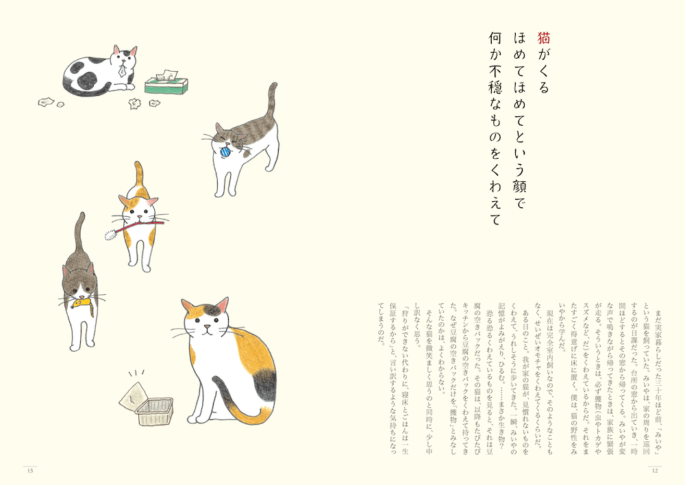 猫のイラストは人気イラストレーターの小泉さよさんによる描き下ろし by 猫のいる家に帰りたい