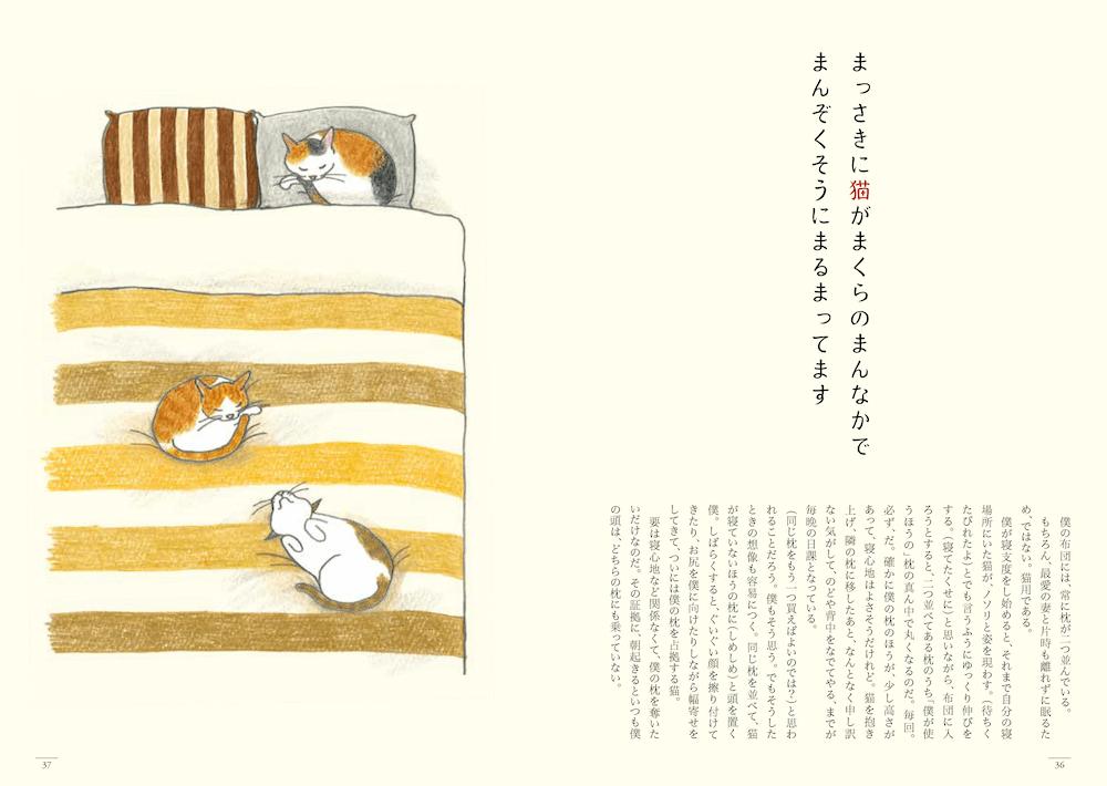 猫の短歌&エッセイ集「猫のいる家に帰りたい」36〜37ページ by 仁尾智