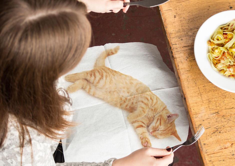 茶トラ猫の写真がプリントされた紙ナプキン「CAT NAPKINS」を膝にかけて食事をするイメージ by SUCK UK