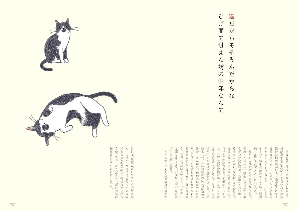 猫の短歌&エッセイ集「猫のいる家に帰りたい」78〜79ページ by 仁尾智