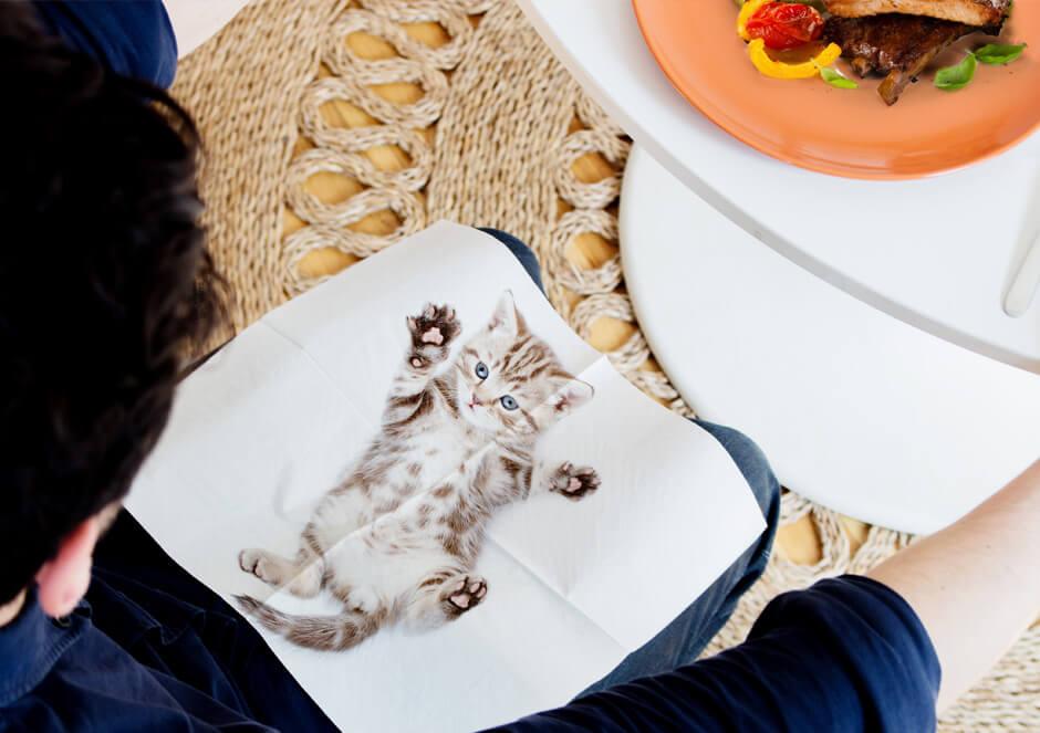 アメリカンショートヘアの写真がプリントされた紙ナプキン「CAT NAPKINS」を膝にかけて食事をするイメージ by SUCK UK