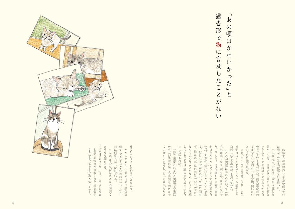 猫の短歌&エッセイ集「猫のいる家に帰りたい」98〜99ページ by 仁尾智