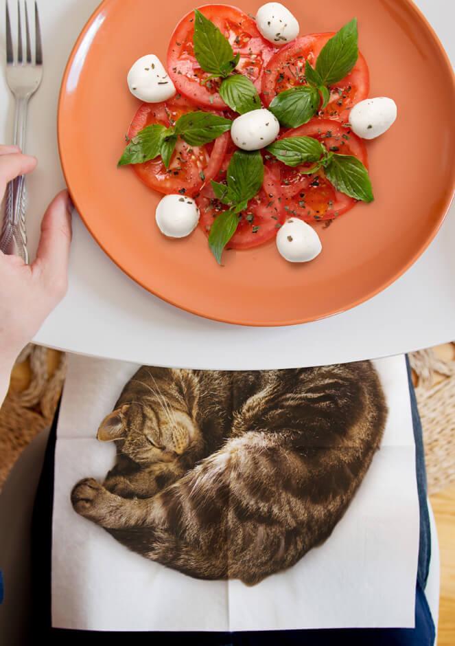 丸まって眠るキジトラ柄猫の写真がプリントされた紙ナプキン「CAT NAPKINS」を膝にかけて食事をするイメージ by SUCK UK