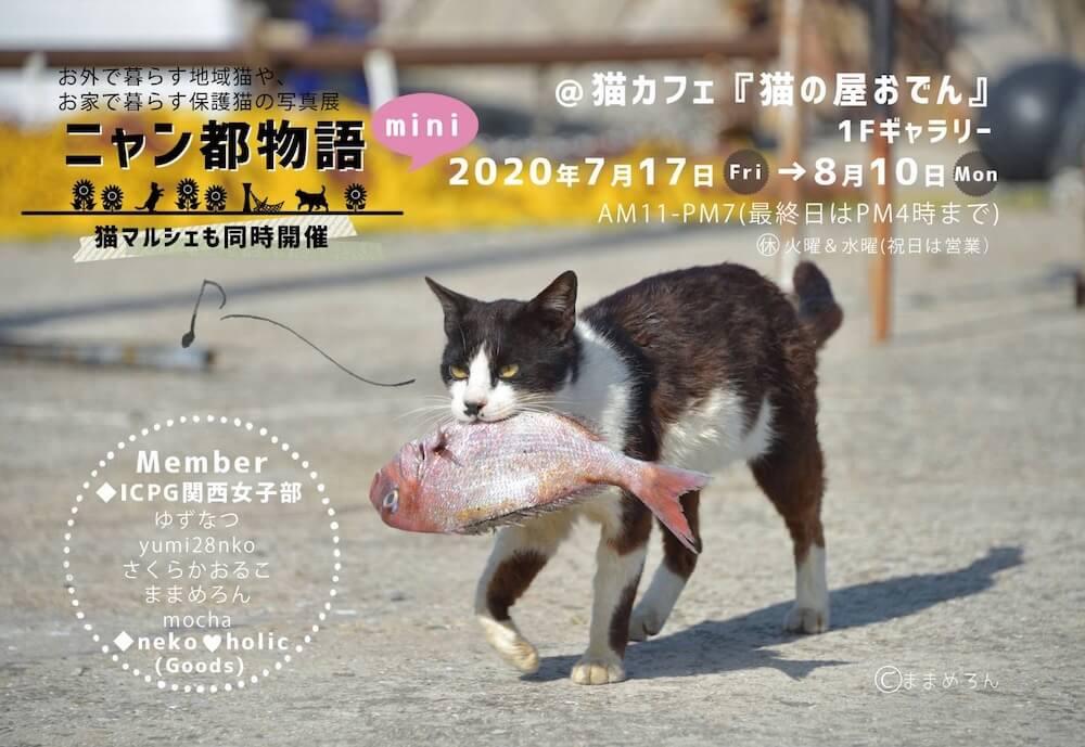 神戸の猫カフェ「猫の屋おでん」で開催されるねこ写真展「ニャン都物語 mini」メインビジュアル