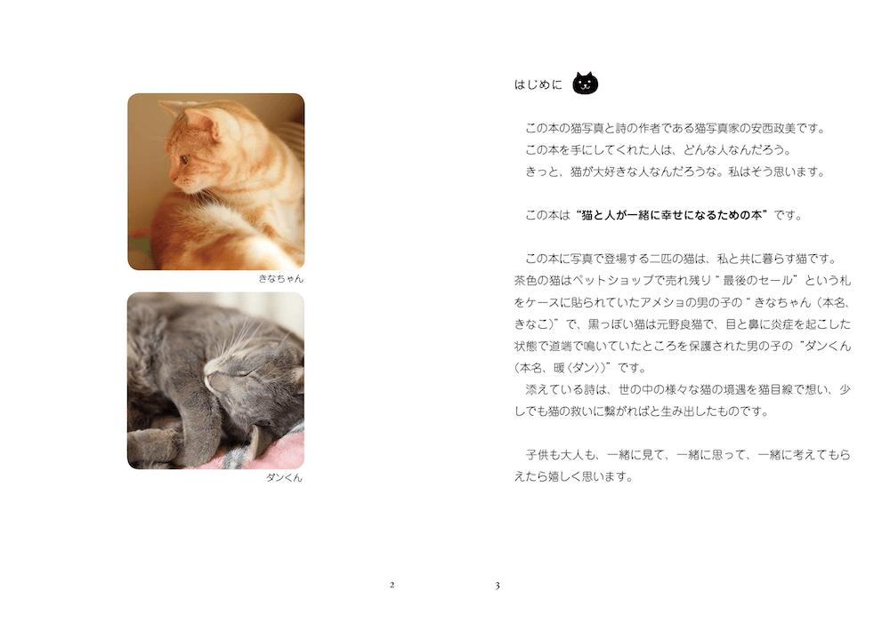 2匹の猫の紹介ページ by 写真集「猫は家族」