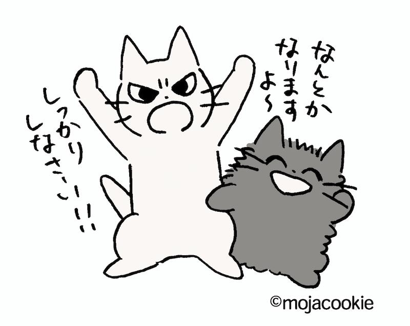 Twitterから誕生した人気猫キャラクター「しかるねこ」