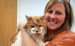 人間年齢でニャンと150歳!イギリス在住の世界最高齢だった猫「ラブル」が31歳で死去