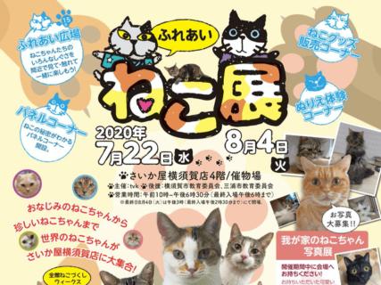 世界中の珍しい猫がやってくるニャ!横須賀の百貨店で「ふれあいねこ展」が7/22より開催