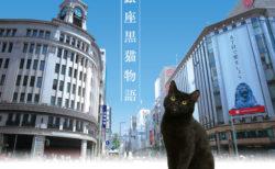 黒猫が悩める人を導く!銀座の街を舞台にさまざまな人間模様を描いたドラマ「銀座黒猫物語」