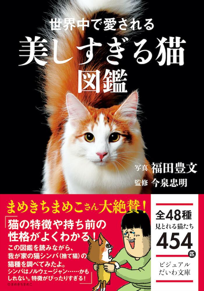 書籍『世界中で愛される美しすぎる猫図鑑』の表紙イメージ