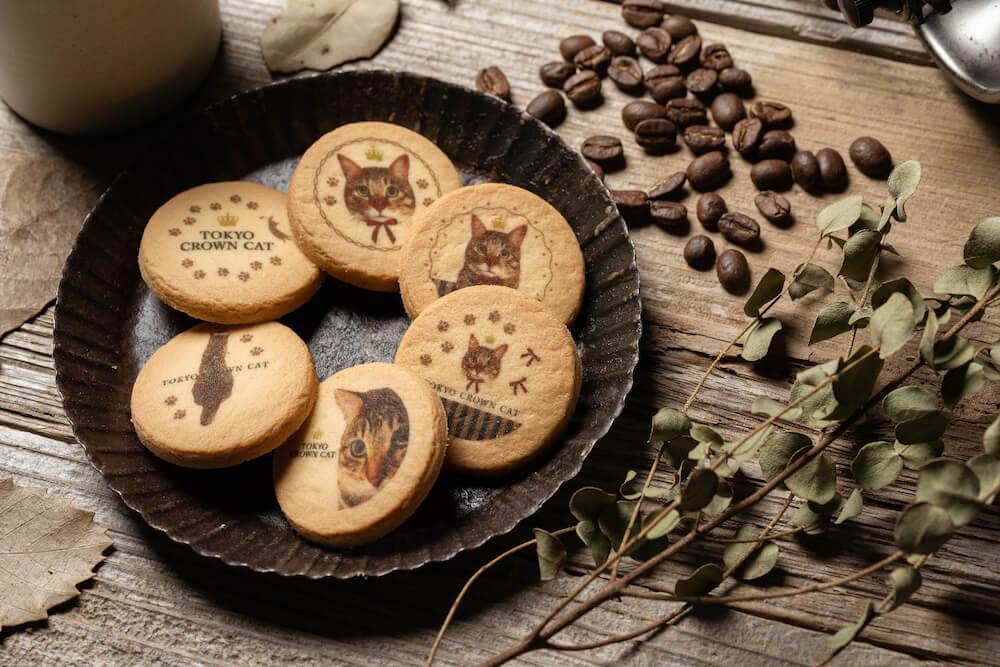 猫の写真がプリントされたクッキー「TORA'S cookies(トラズクッキー)」盛り付けイメージ by TOKYO CROWN CAT