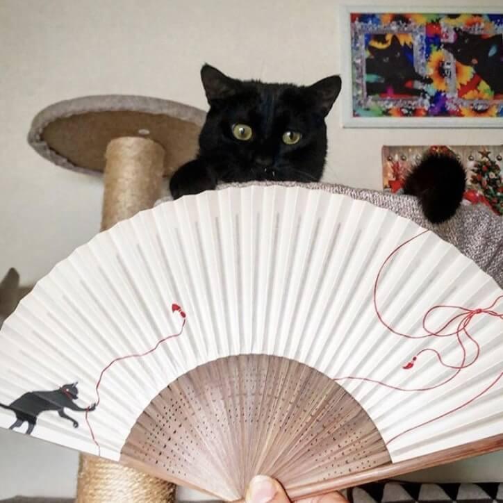 猫デザインの扇子
