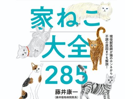 藤井康一 獣医師の書籍「現役獣医師が猫のホンネから不調の原因までを解説! 家ねこ大全 285」