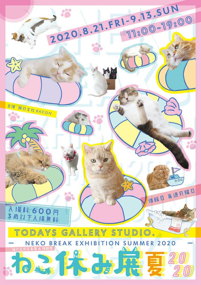 猫イベント「ねこ休み展 夏 2020」のメインビジュアル