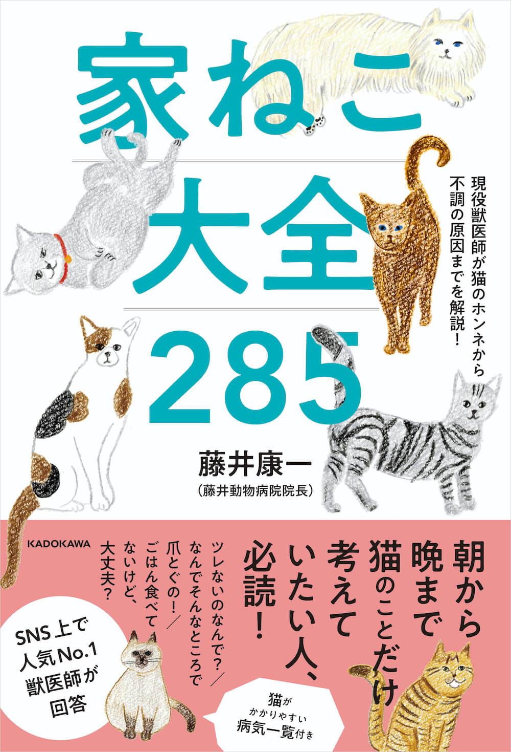 書籍「現役獣医師が猫のホンネから不調の原因までを解説! 家ねこ大全 285」表紙イメージ