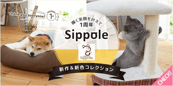 ペット用品ブランドの「Sippole(しっぽる)」の新商品