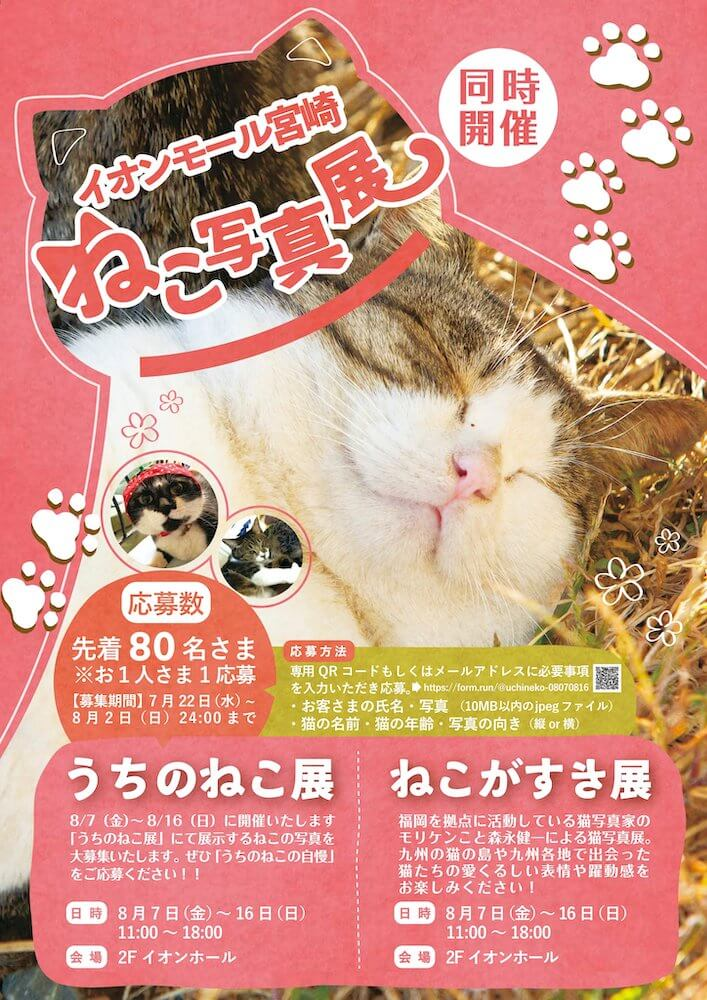 猫の写真展「ねこがすき展」「うちのねこ展」のメインビジュアル in イオンモール宮崎