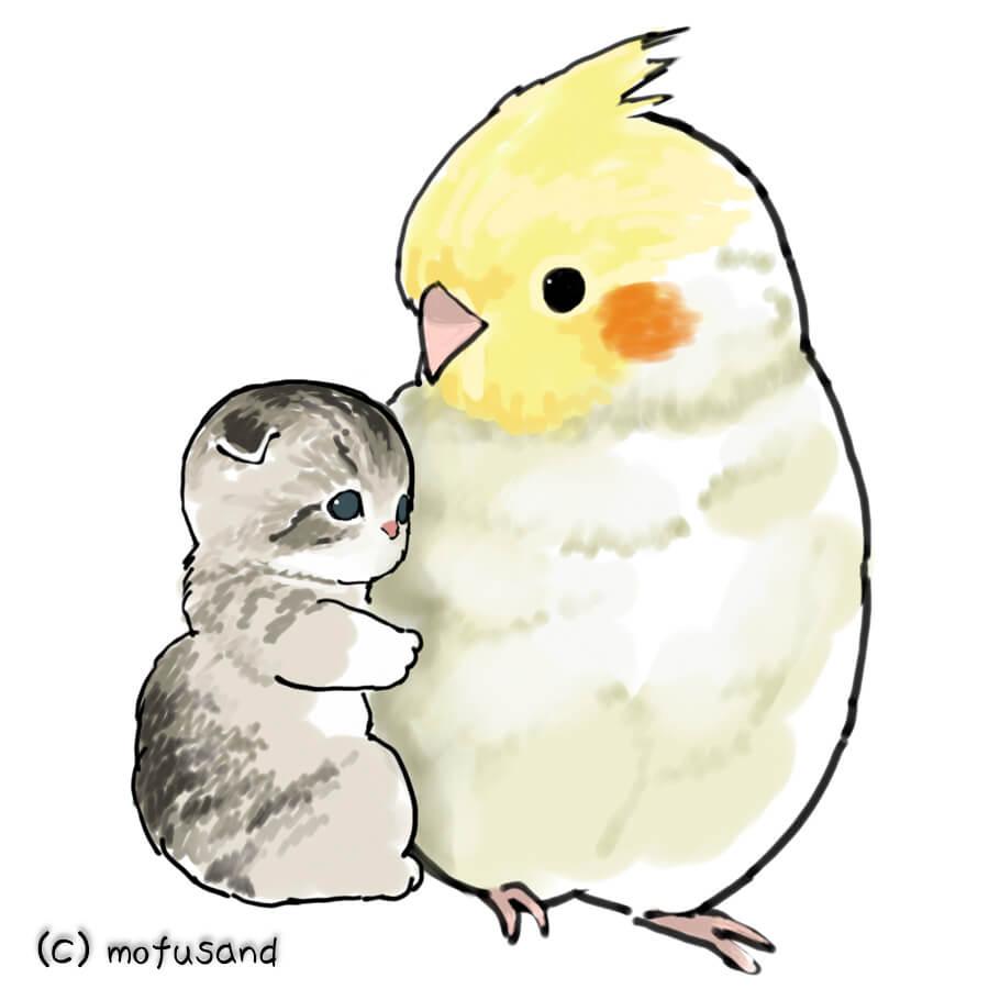 猫とインコのイラスト by もふさんど