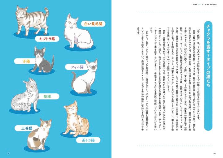 「ねこ瞑想」の効果を擬猫化したイラストイメージ