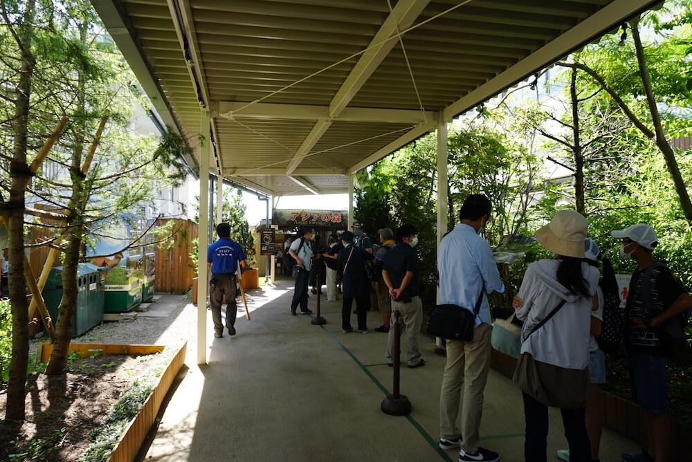 スナネコの赤ちゃんの展示エリアに並ぶ待機列の様子 by 那須どうぶつ王国