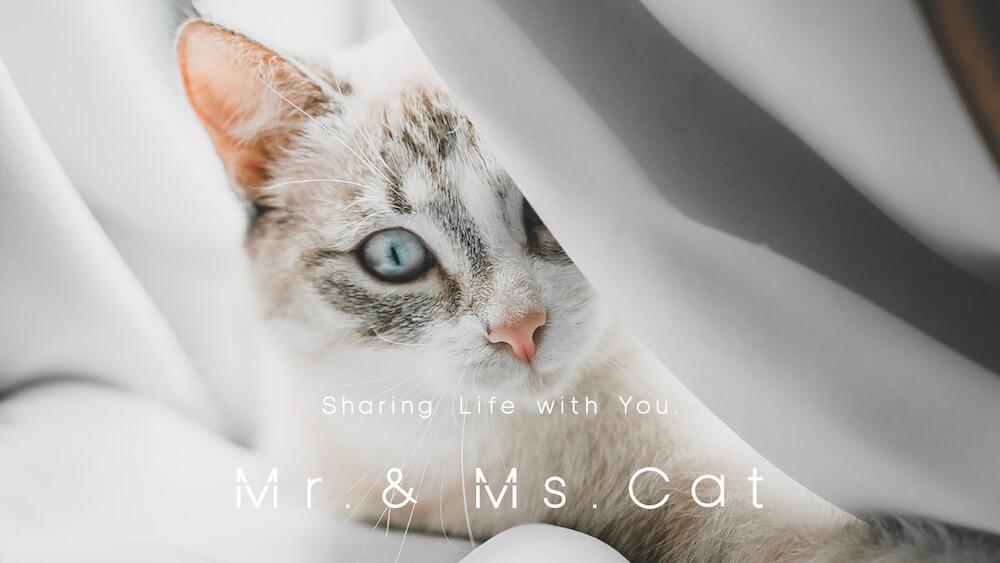愛猫家のためのライフスタイルD2Cブランド「 Mr. & Ms. Cat(ミスター・アンド・ミズ・キャット)」ブランドイメージ