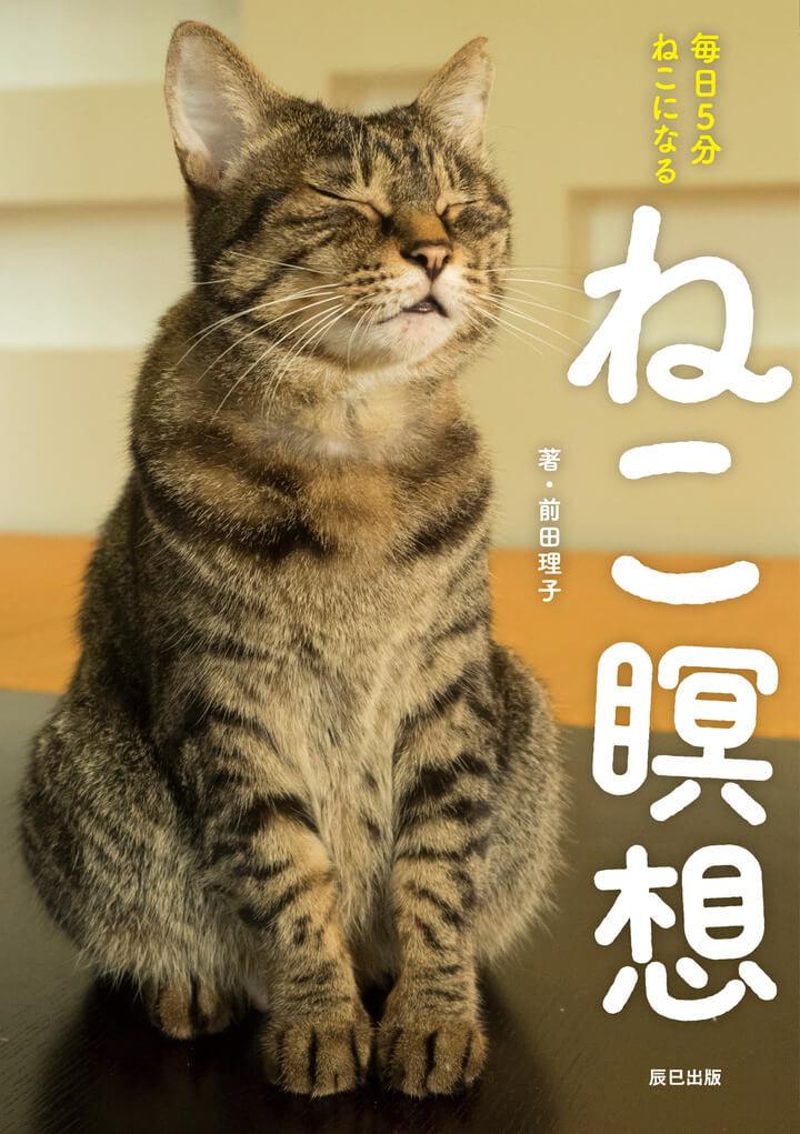 書籍「ねこ瞑想」の表紙イメージ