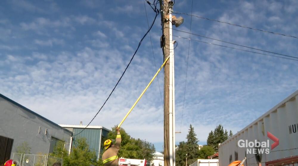 電柱から降りられない猫を救出しようとする消防士 in カナダ アルバータ州 カルガリー