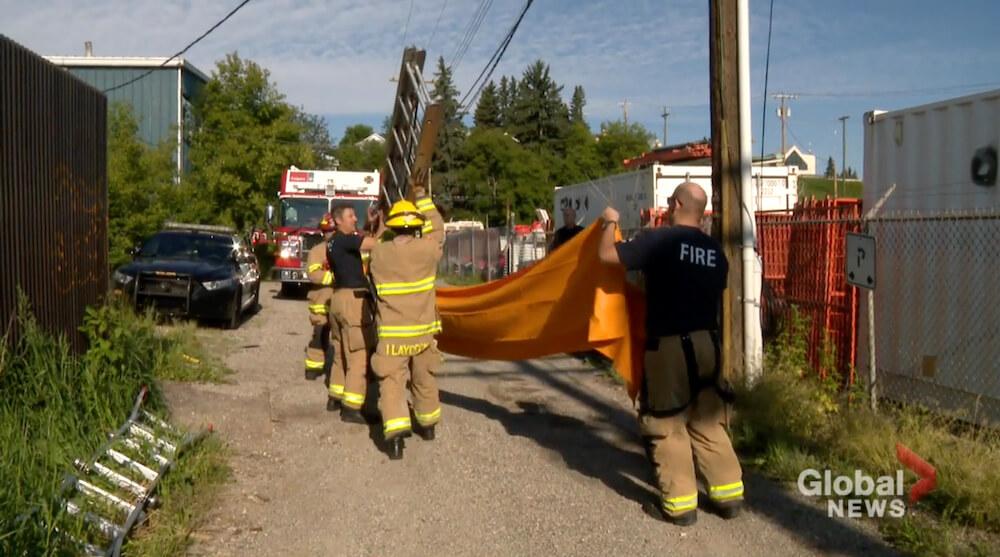 電柱から降りられない猫を救出しようとハシゴを準備する消防士 in カナダ アルバータ州 カルガリー
