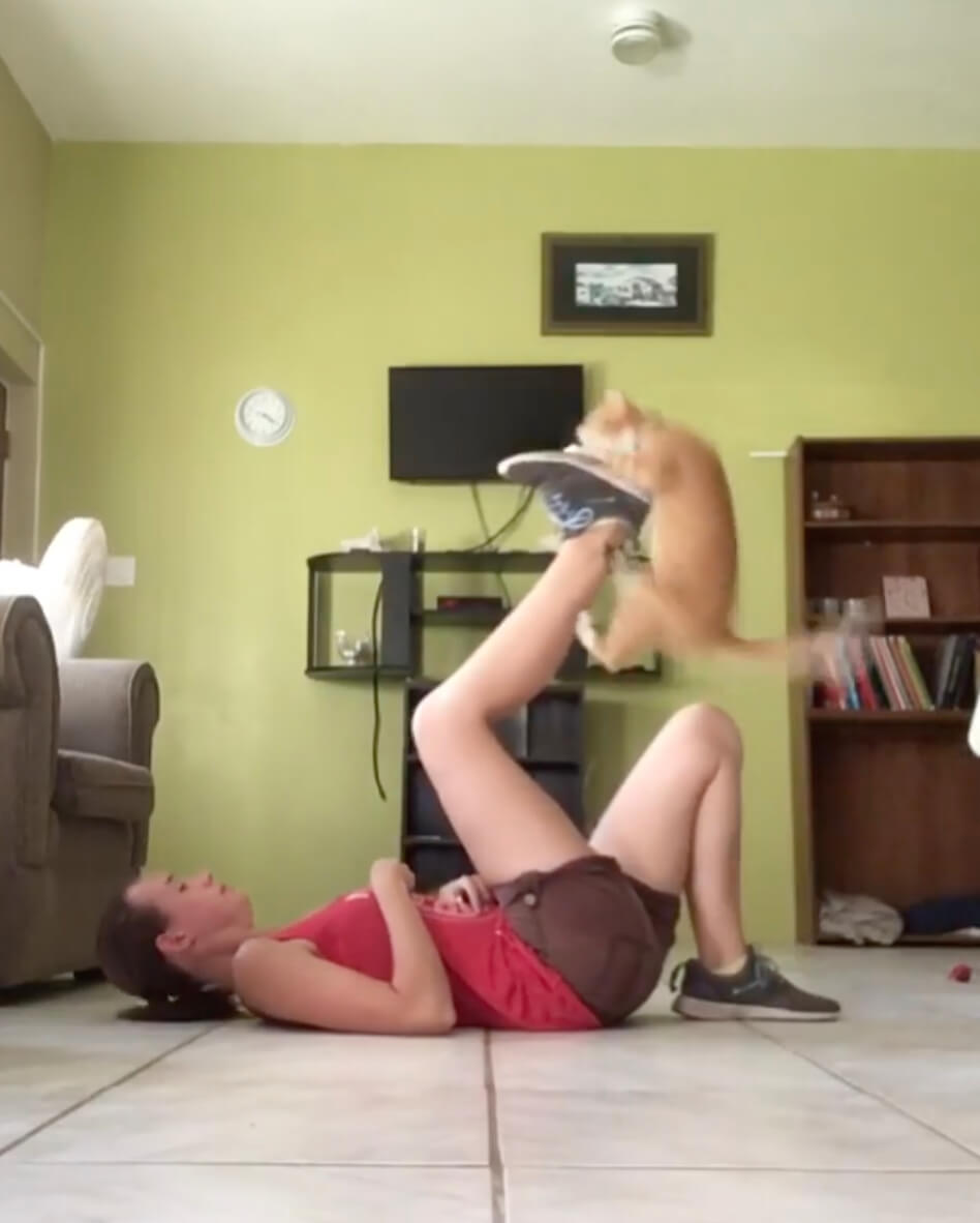 仰向けになって持ち上げた飼い主さんの足の上に飛び乗る茶トラ猫