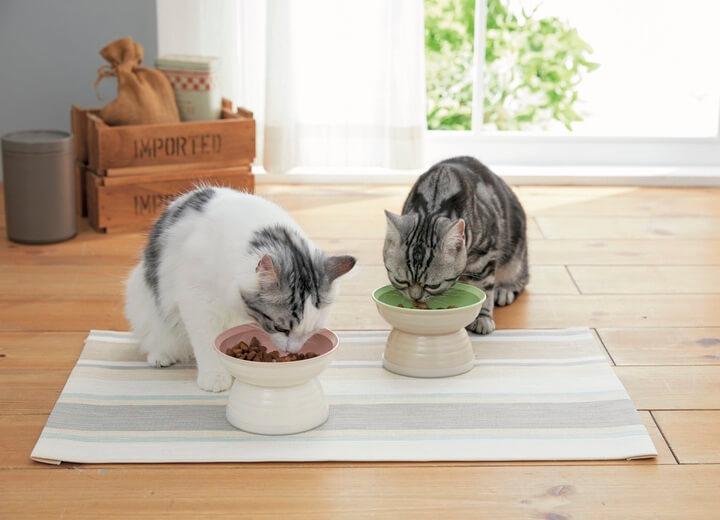 猫用の食器「食べやすいおわん」 by Sippole(しっぽる)