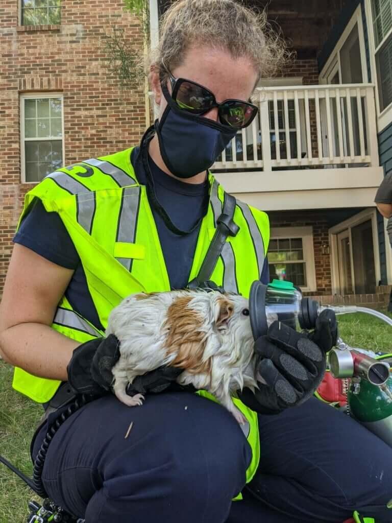酸素マスクで酸素を投与されるモルモットの様子 by 米国メリーランド州の火事現場