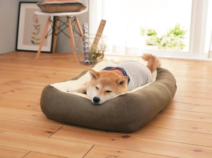 Sippole(しっぽる)の犬猫兼用のベッド